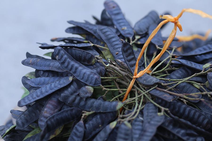 Lô hội, quả lý gai Ấn Độ, bồ kết và bột tử đinh hương