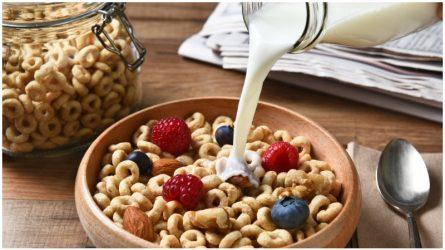 Thức ăn sấy khô có thực sự có lợi cho sức khỏe?