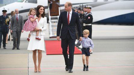 Vì sao nhiều người không vui khi công nương Kate mang thai đứa con thứ 3?