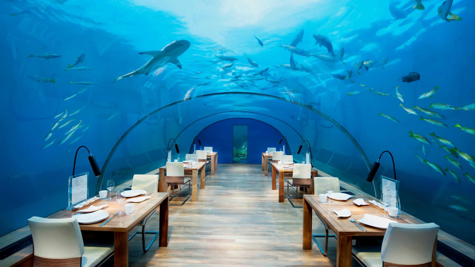 du-lich-nghi-duong-_-Maldives_elle-man-3