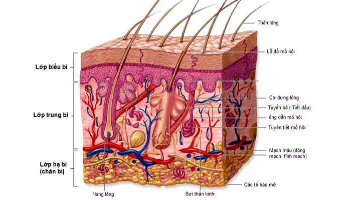 Viết cho làn da bị mụn: Bạn đang được hưởng một đặc ân cực kỳ lớn