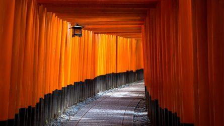 Bí quyết du lịch Kyoto - Một Nhật Bản thuần khiết