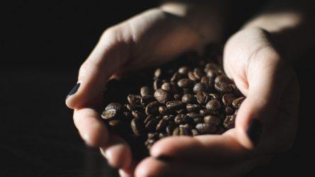 Khoa học chứng minh uống cà phê đúng cách sẽ sống lâu hơn