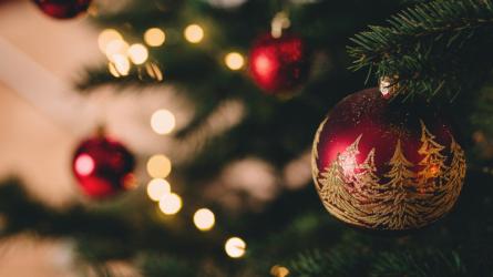 Chiêm ngưỡng 20 cây thông Giáng sinh ấn tượng trên thế giới