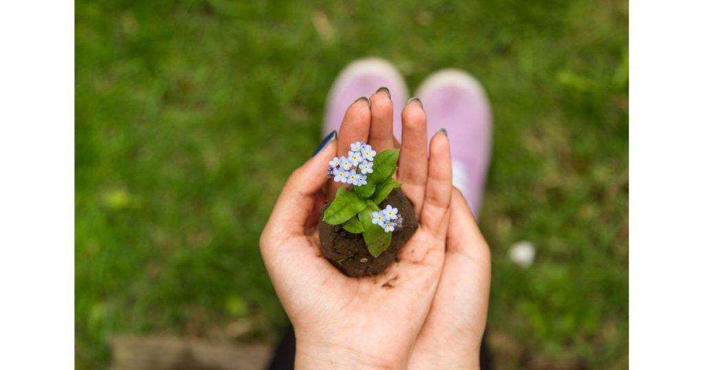 liệu pháp chữa trị thiên nhiên