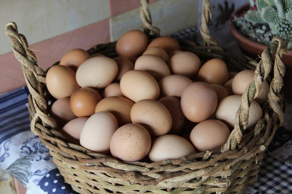 trứng gà trong thực đơn low carb