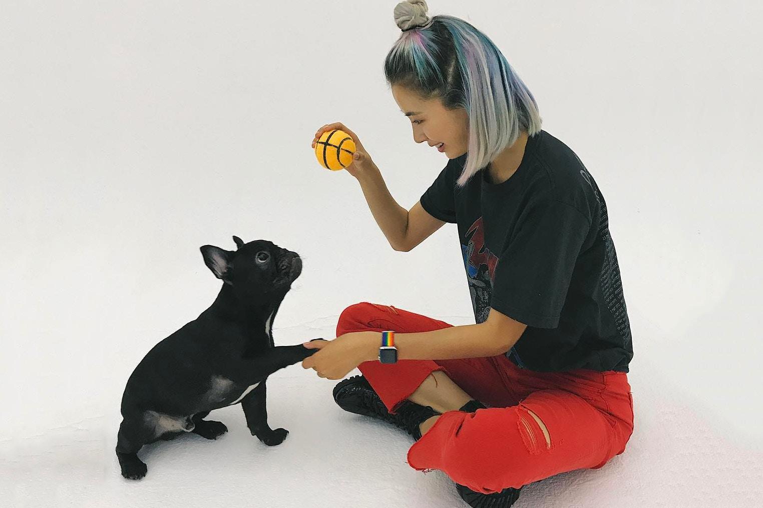 cún cưng 2