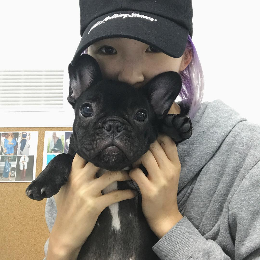 cún cưng 4