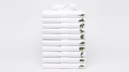 Không còn cá sấu huyền thoại, Lacoste thay logo kêu gọi bảo vệ động vật sắp tuyệt chủng