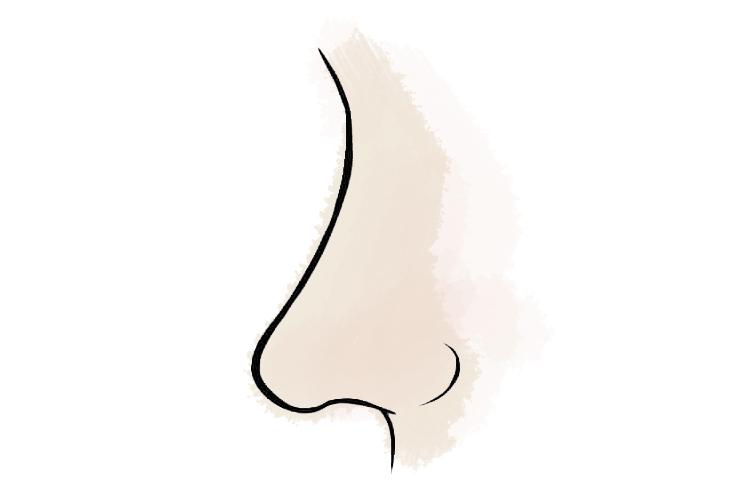 hình dáng mũi 5