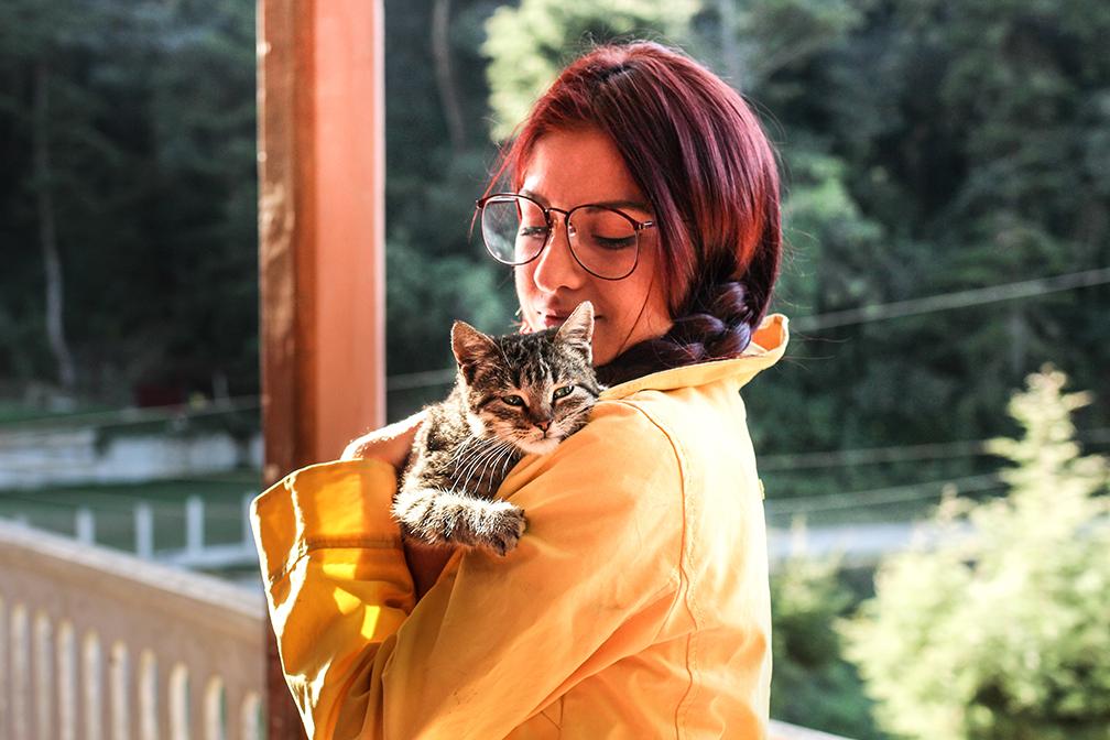 người yêu mèo 3