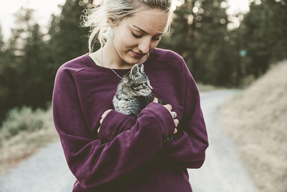 người yêu mèo 7
