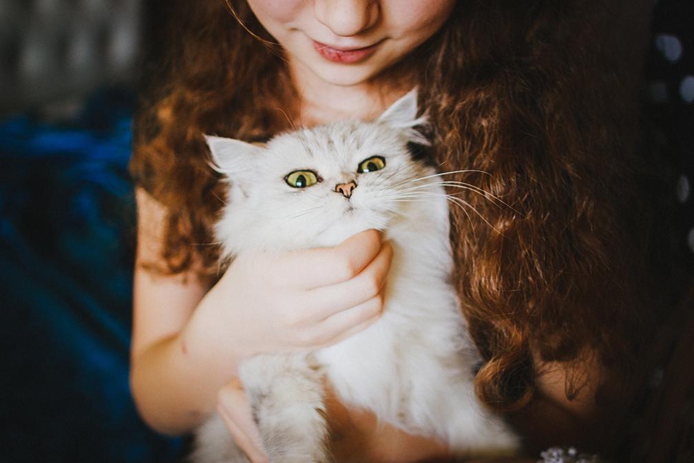 người yêu mèo 8