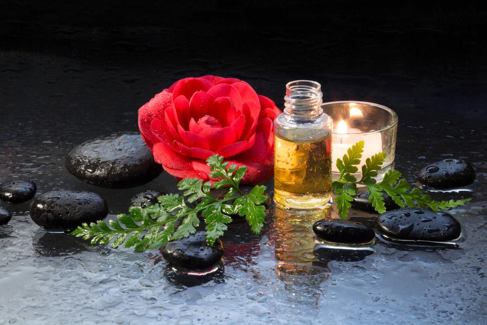cách làm đẹp tự nhiên hoa trà đỏ