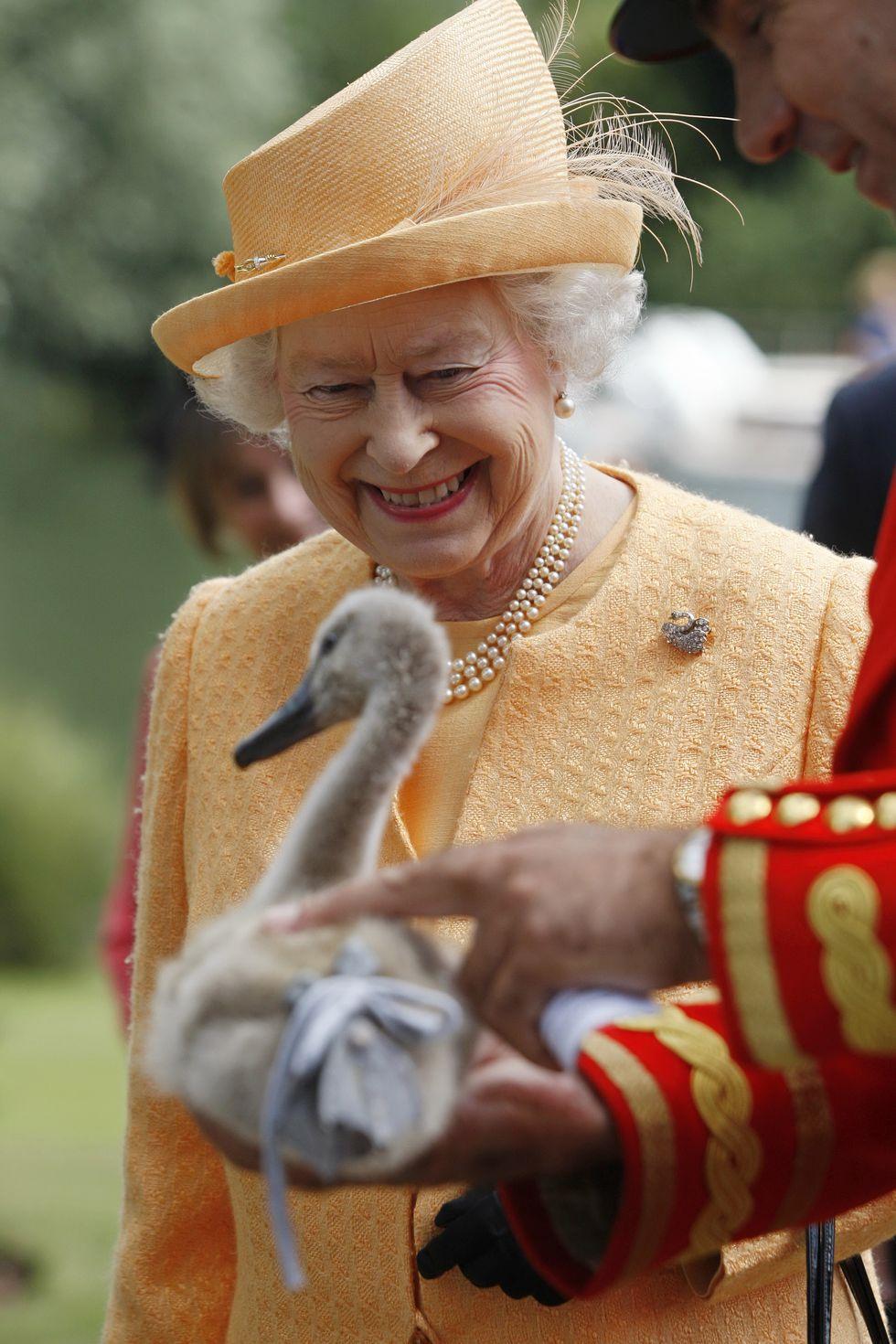 Nữ hoàng Elizabeth 6