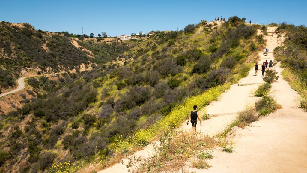 du lịch california 1