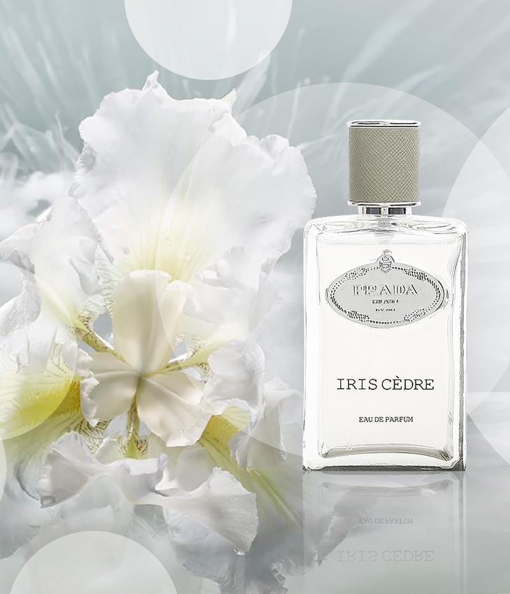 hương nước hoa mới Prada Infusion De Vetiver