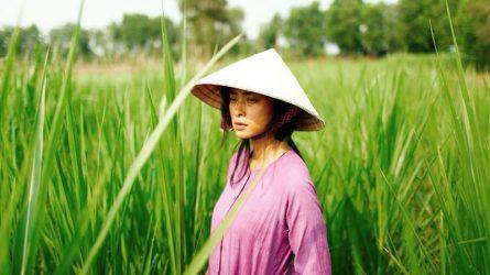 Ngô Thanh Vân mang Hai Phượng đến LHP Cannes 2018