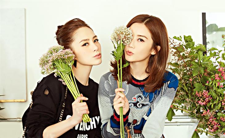 Chung hân đồng twins