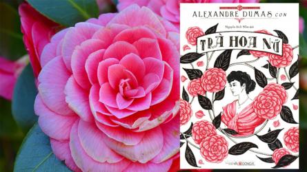 [Review sách hay] Trà Hoa Nữ – Có hay không tình yêu thuần khiết dành cho một kỹ nữ?