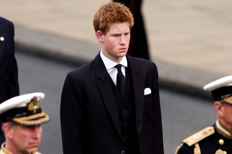 Hoàng tử Harry 18