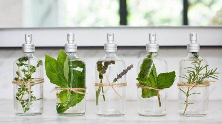 Liệu pháp mùi hương và làm đẹp với tinh dầu thiên nhiên