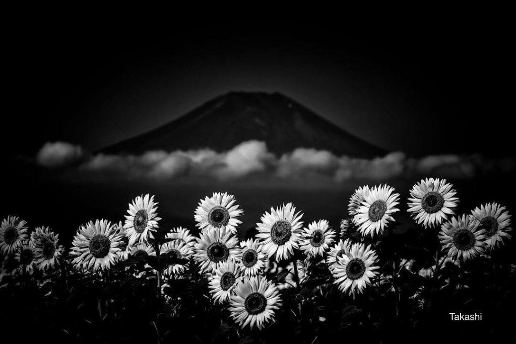 Núi Phú Sĩ 5
