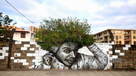 Chiêm ngưỡng những tác phẩm nghệ thuật đường phố lấy cảm hứng từ thiên nhiên