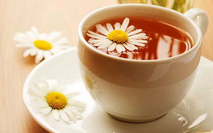 trà hoa cúc 4