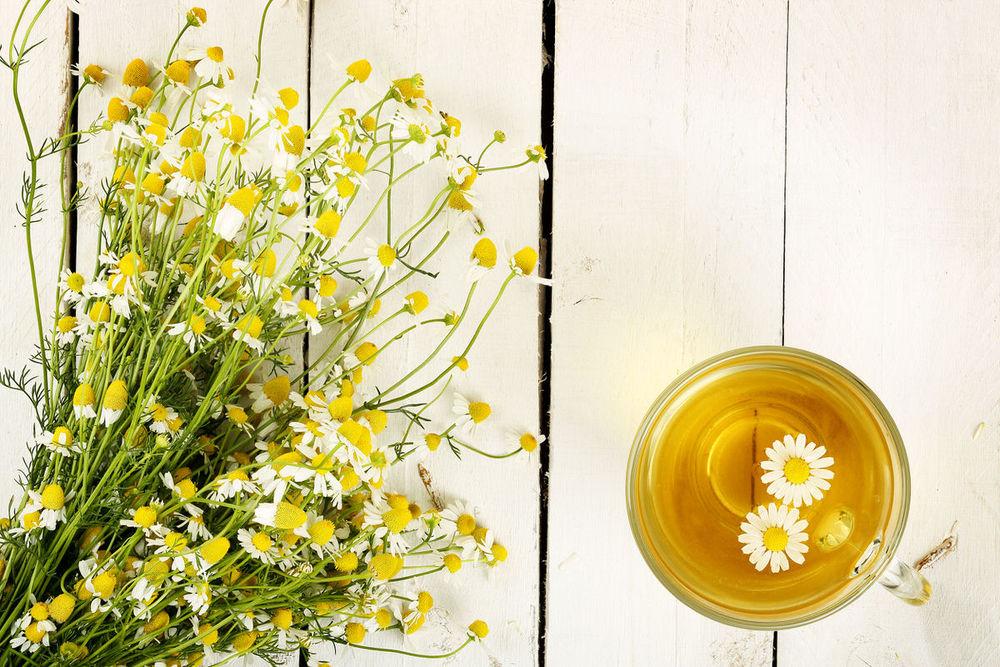 trà hoa cúc 5