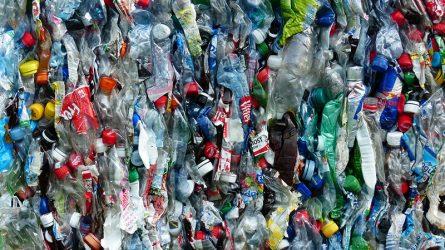 """Đã sáng chế ra loại enzym có thể """"ăn"""" được rác thải nhựa."""