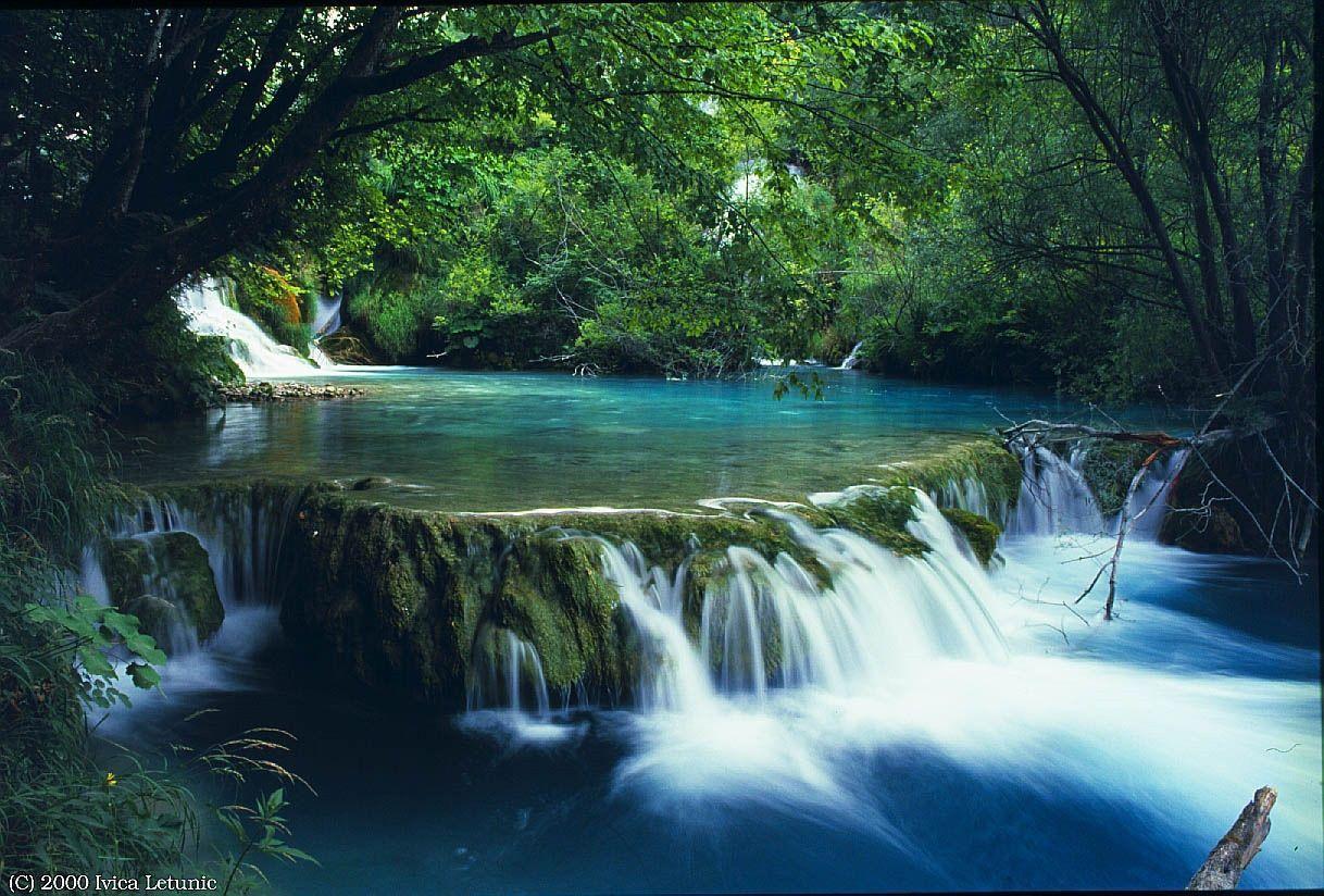 vườn quốc gia 2