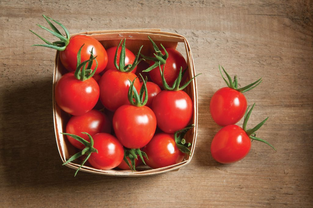 da không đều màu cà chua
