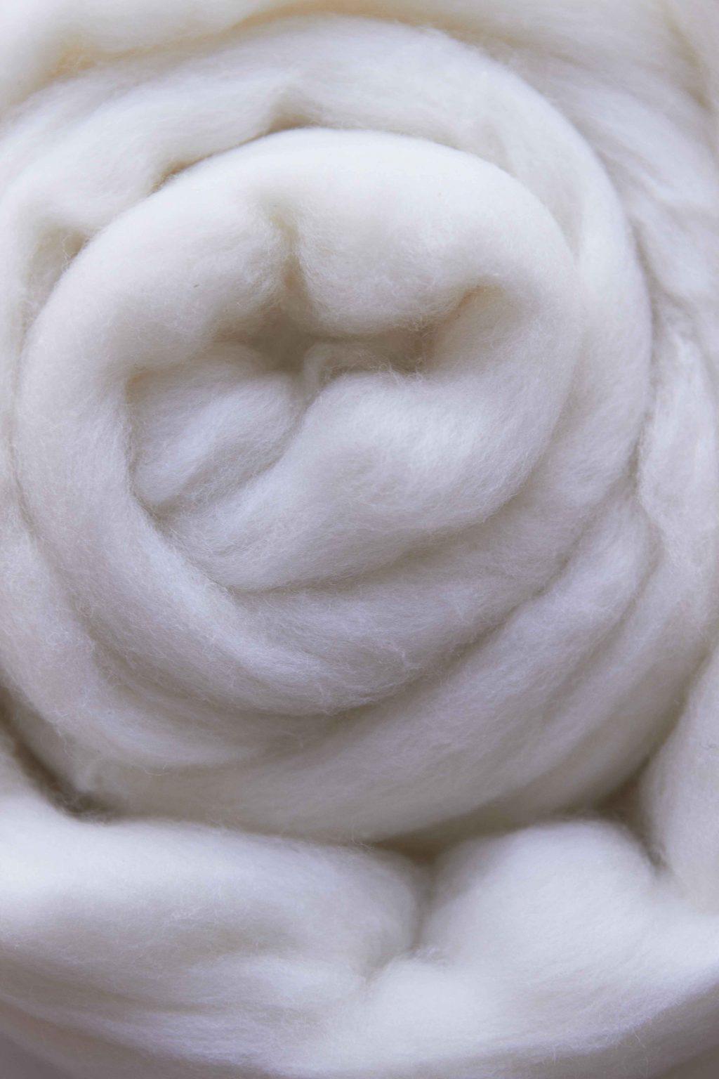 Mỗi bộ lông cừu Merino trưởng thành trung bình đủ để may 3 bộ đồ nam giới, 6 bộ váy dài và 70 đôi tất