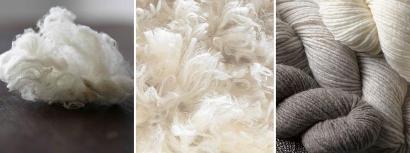 len cừu