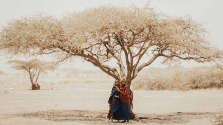 Khám phá hòn đảo Zanzibar đầy hoang dại và sống động qua ống kính của nhiếp ảnh gia Machano