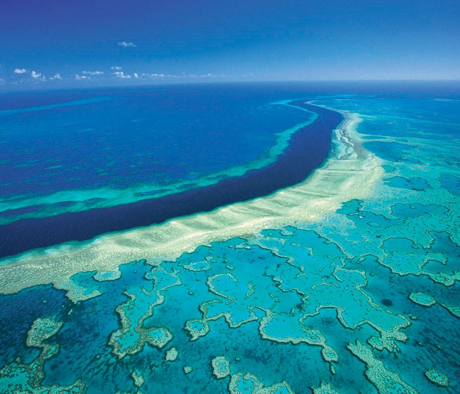 địa điểm lặn biển 12