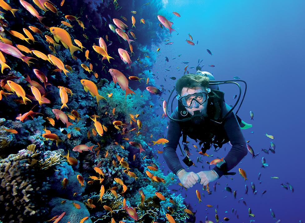 địa điểm lặn biển 8