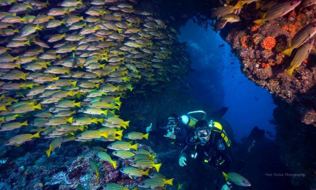 elle việt nam địa điểm lặn biển 38
