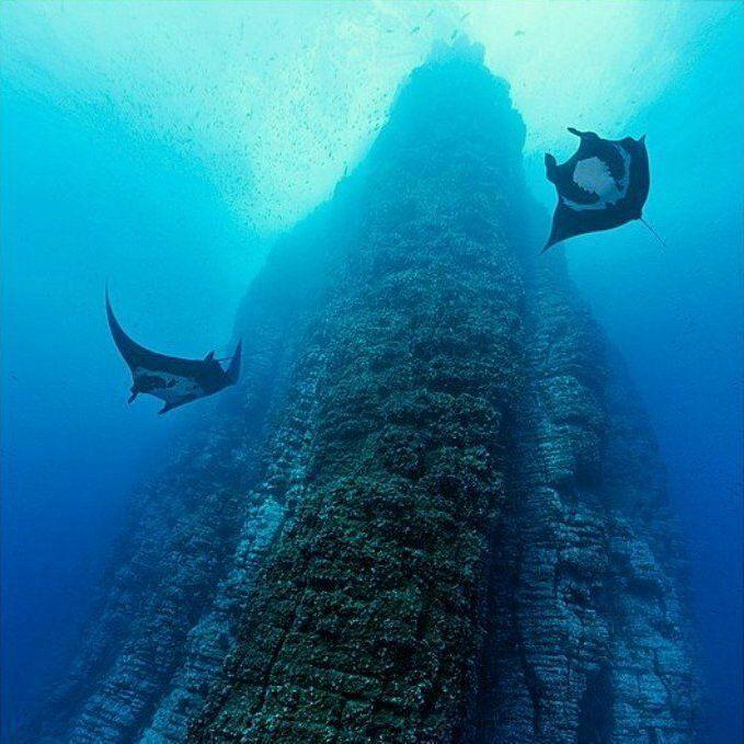 elle việt nam địa điểm lặn biển 41
