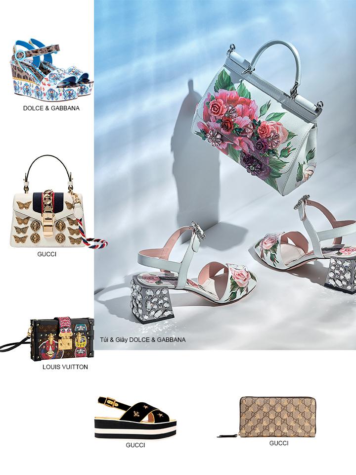 giày và túi 3
