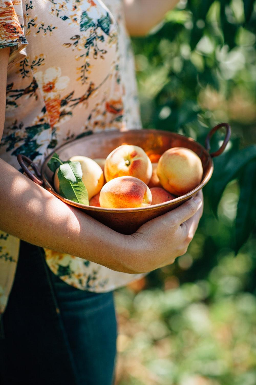 Trái cây và 12 cung hoàng đạo 1