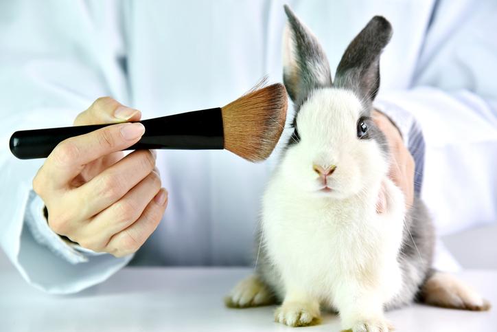 mỹ phẩm thử nghiệm trên động vật 6