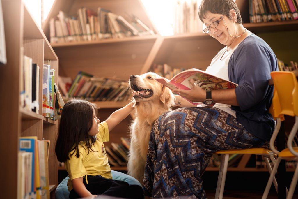 cuộc thi nhiếp ảnh dành cho chó 21