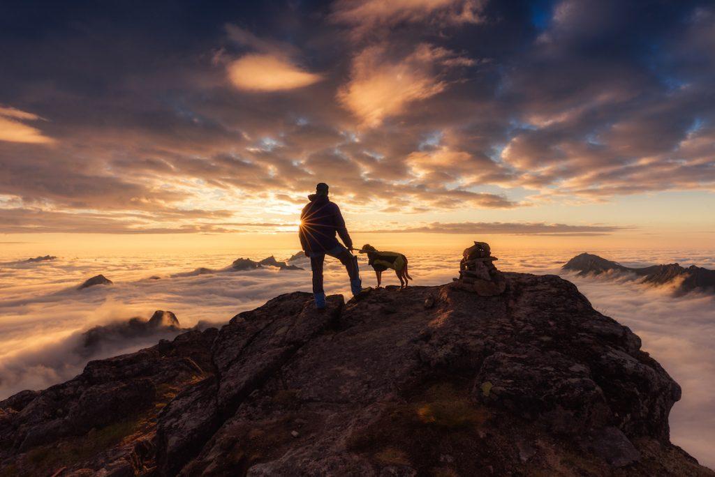 cuộc thi nhiếp ảnh dành cho chó 30