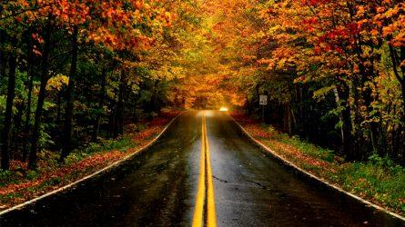 New England, nơi ngắm lá vàng rơi mùa Thu tuyệt vời nhất