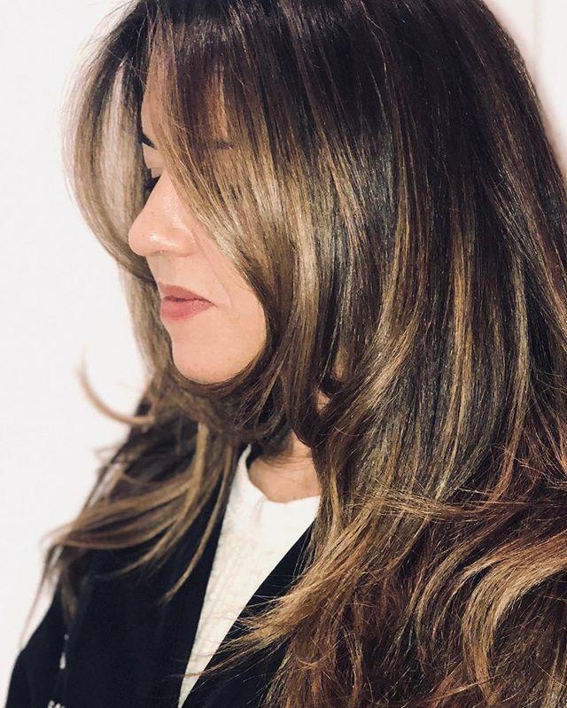 màu tóc nâu_stephaniebcolor1