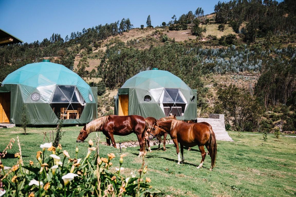 lối sống bền vững peru eco camp 3