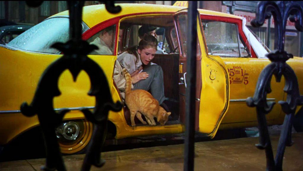elle viet nam xe taxi New York 3