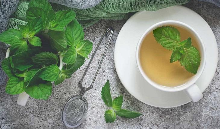 loại trà tốt 06